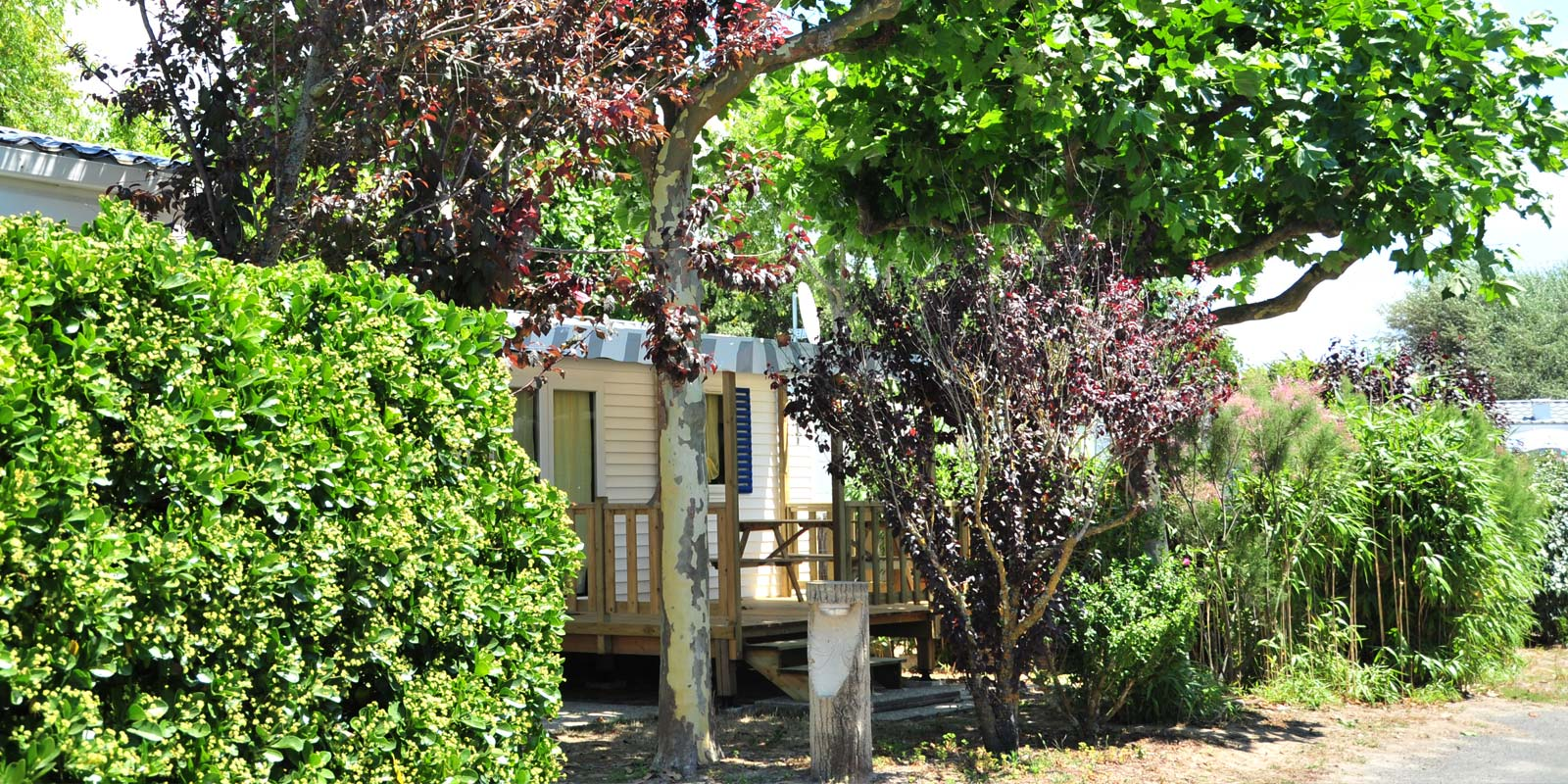 Trees in front of a mobile home at the campsite park in Saint-Hilaire